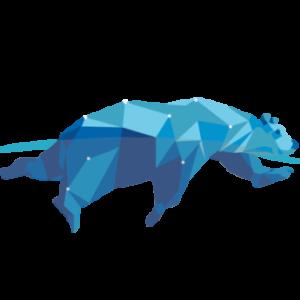Group logo of ICEBERG COWBOYS